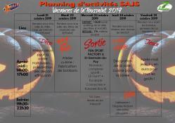 Planning d activite sajs